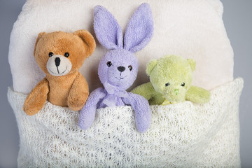 Plush toys in a bed