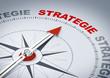 Kompassnadel Strategie - 81872187