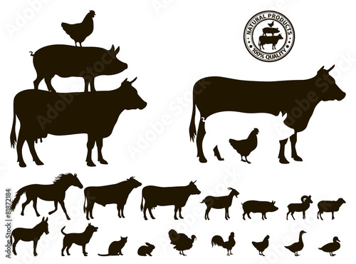vector farm animals silhouettes isolated on white - 81872184