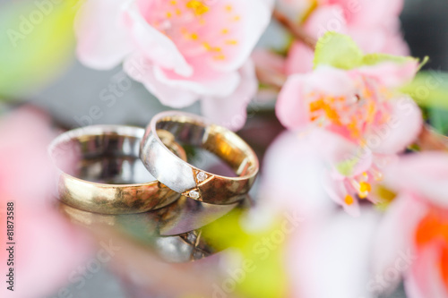 wedding rings - 81873588