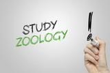 Hand writing study zoology poster