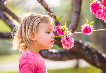 Beautiful baby girl in blooming apricot tree branches