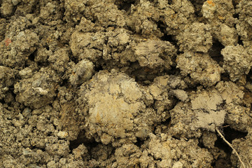 mixture of soil sandy soil, abstract background
