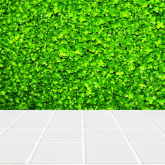 Modern beige mosaic with the wall made of four-leaf plant green