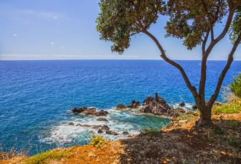 tropical beach of Madeira