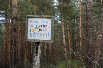 information board in forest