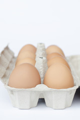 eggs on a pack and white background