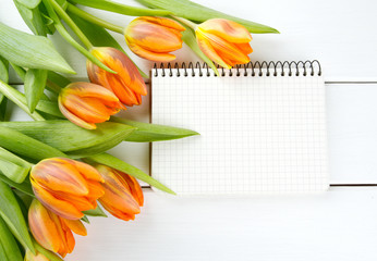 orange tulips and copy space for your text