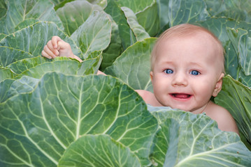 Happy beautiful baby in green cabbage leaves