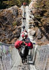 Yaks and people on hanging suspension bridge