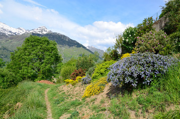 Spring slope in the mountains