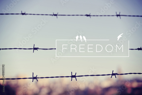 Freedom quote concept barbed wire background