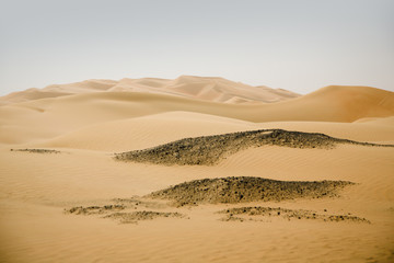 Beautiful sand desert dunes in the Middle-East