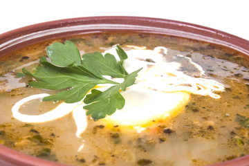 poured a bowl of hot soup with sour cream green