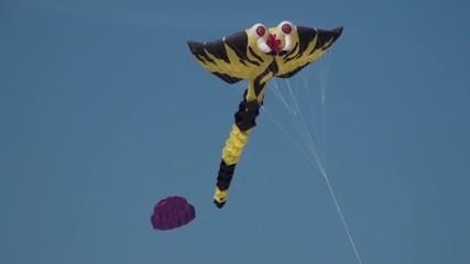 Cerf-volant géant