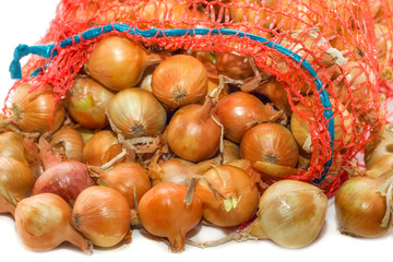 Red onion in a bag