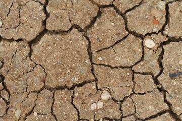 cracked dry soil closeup. horizontal