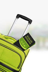 Bosnia and Herzegovina. Green suitcase with guidebook.