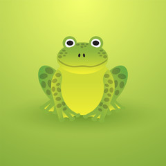 Small green frog on a light background
