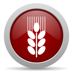 grain red glossy web icon