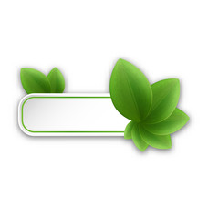 Eco friendly banner with green leaves