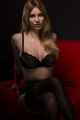 Provocative woman in sexy lingerie