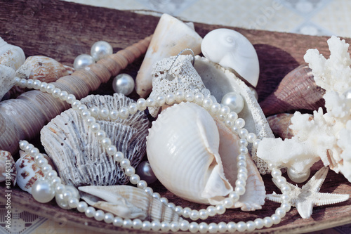 a lot of sea shells and perls in art mess - 81896331