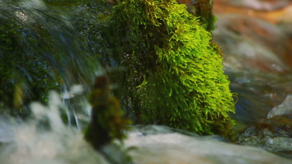 Stone with green moss lies in a mountain river