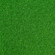 Artificial green Grass - 81902922