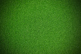 Artificial green Grass