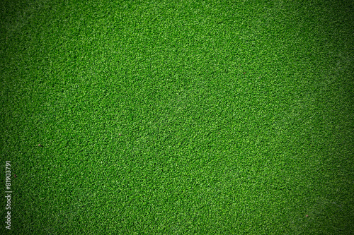 Leinwandbild Motiv Artificial green Grass