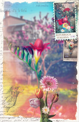 Old fashioned postcard with flowers of spring and stamps series