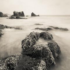 Sea coast in monotone