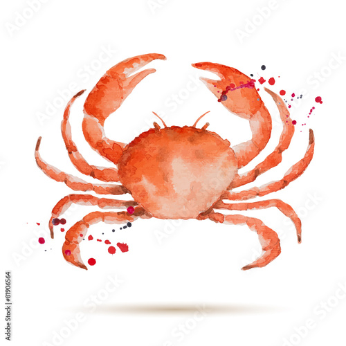 Watercolorcrab - 81906564