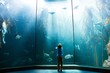 Young man looking at penguins in a tank - 81910752