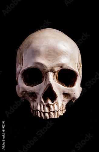 Poster Skull Isolated on black