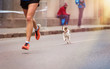 Leinwanddruck Bild - Unrecognizable young runner and a dog at the city race