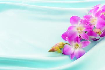 奇麗な蘭の花