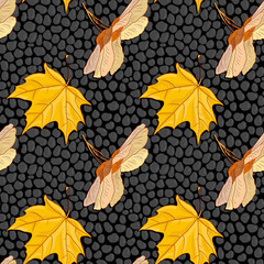 vector seamless pattern with maple seeds