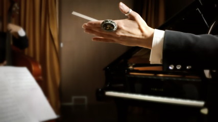 Orchestra leader hands
