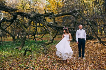 Wedding shot of bride and groom in parks