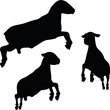 sheep silhouette with jumping pose - 81920963
