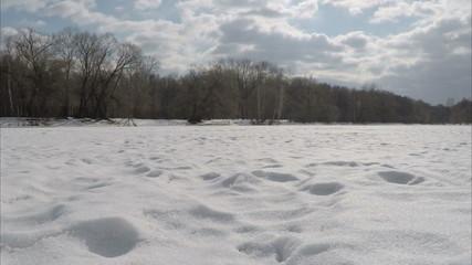 The frozen winter lake in wood