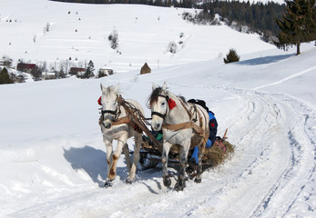 winter village horse carriage