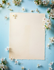 art Spring border background with blossom