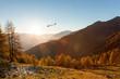 Leinwanddruck Bild - aliante in volo su paesaggio autunnale