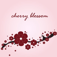 card with cherry blossom