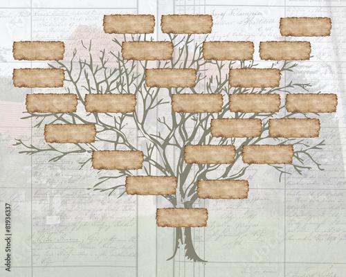 Family tree - 81936337