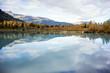 Autumn in Alaska - Aspen in Water Reflection