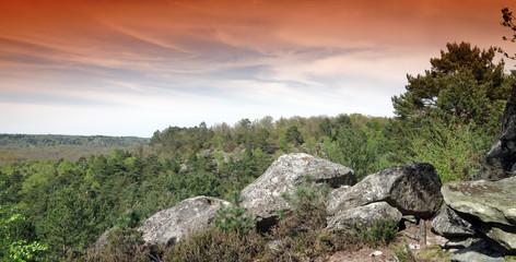 3 pignon massif forestier  du parc du gâtinais